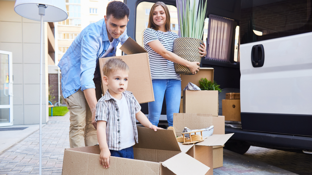 Professional Moving / Removalist services